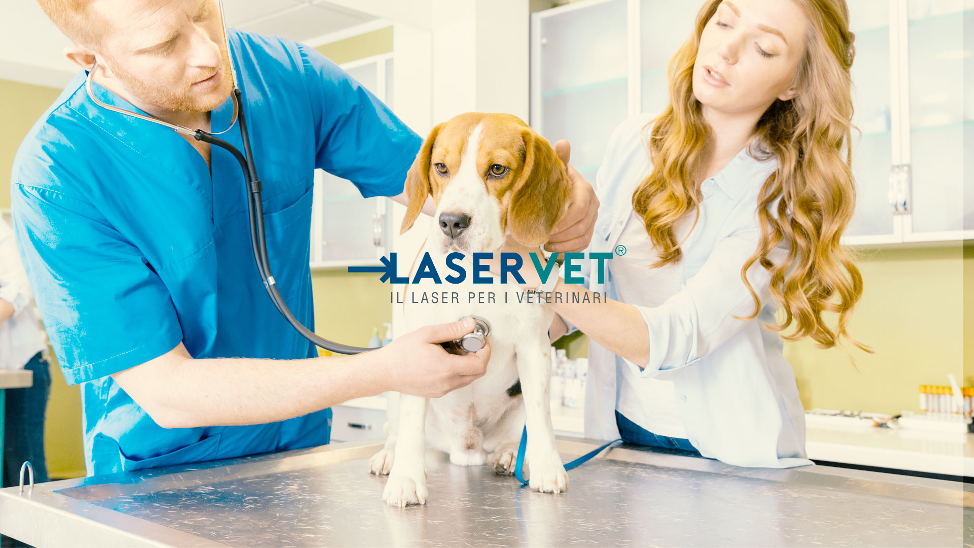 Studio FLO per Laservet: restyling immagine e logo