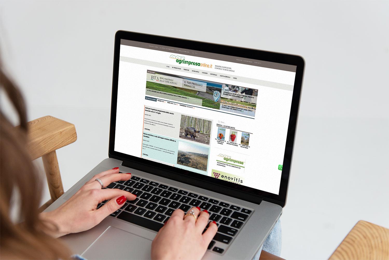 Agrimpresa Online Studio Flo nuovo sito automatismi